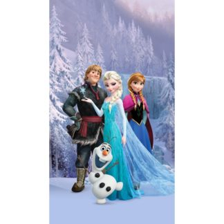 - AG ART Dětský závěs Ledové království Frozen
