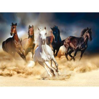 - Fototapeta XXL Horses 360 x 270 cm